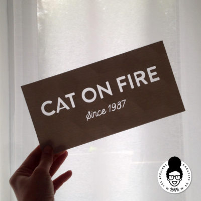 CAT ON FIRE