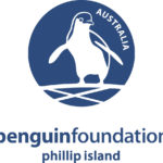 Penguin foundation
